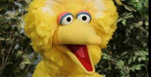 Romney's Angry Bird